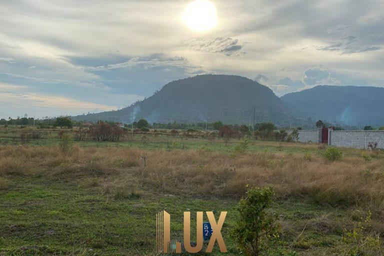 LUX-45483-8